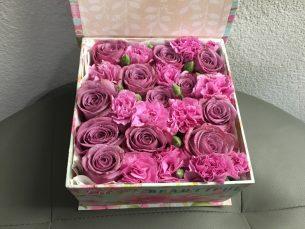 Lavender Pink Flowers
