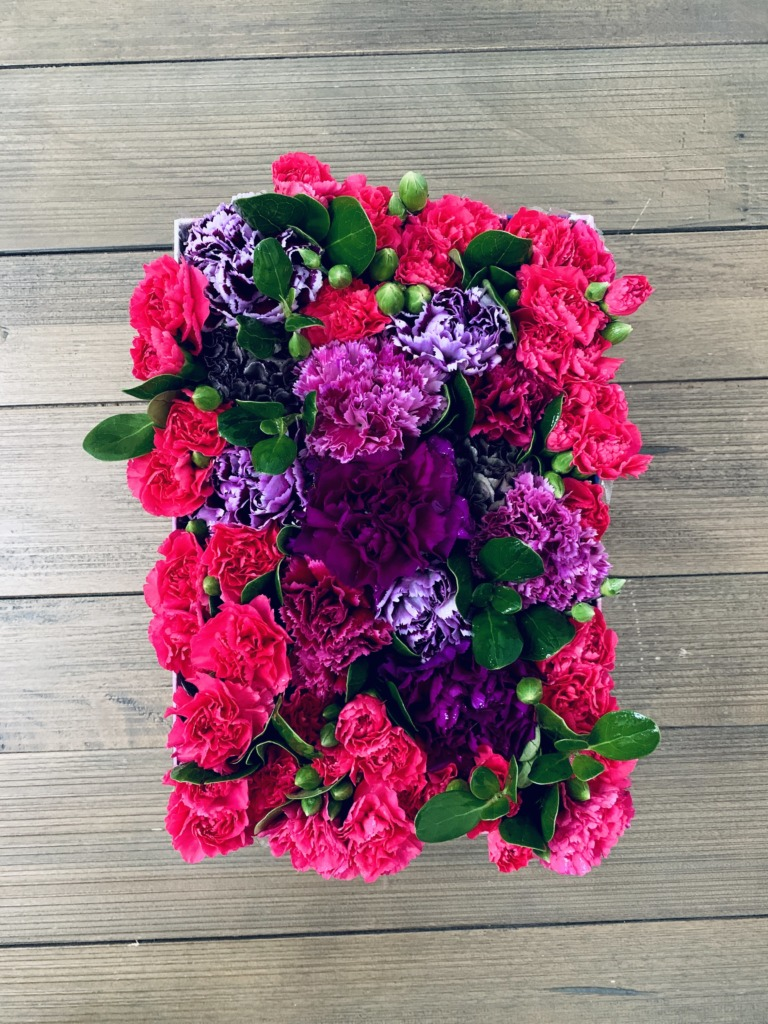 Carnation Power