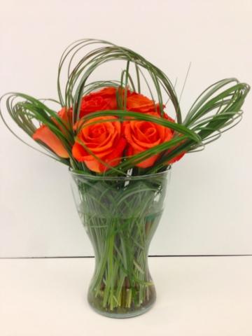 Orange spice roses, modern, contemporary