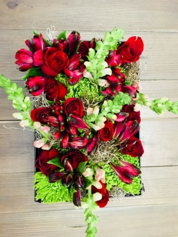 holiday, Christmas, modern, flowers, flowers in a box