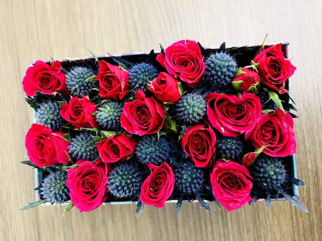 flowers in a box, bold, modern