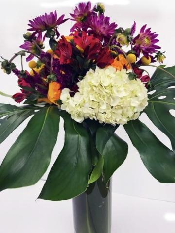 modern flower design, exotic flowers