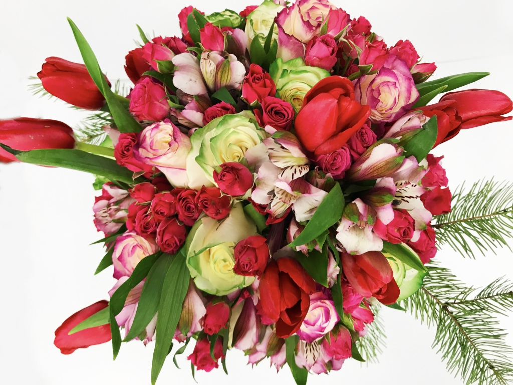 Illusion roses, tulips, spray roses, & alstroemerias