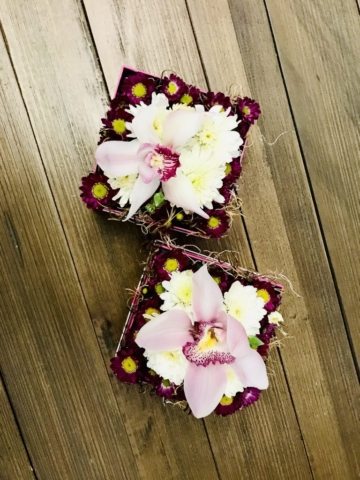 flowers in a box,  orchid, modern